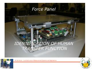 Force Panel IDENTIFICATION OF HUMAN  TRANSFER FUNCTION