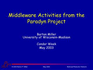 Middleware Activities from the Paradyn Project