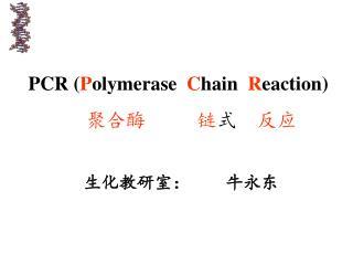 PCR  ( P olymerase   C hain   R eaction)
