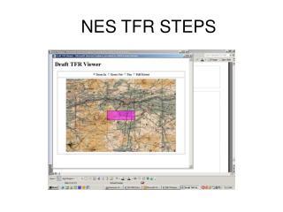 NES TFR STEPS