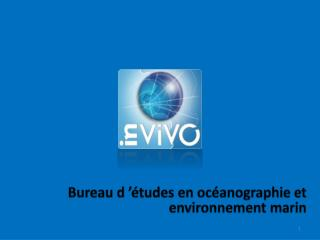 Bureau d'études en océanographie et environnement marin