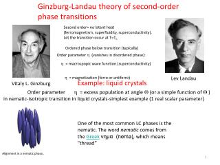 Ginzburg-Landau theory of second-order phase transitions