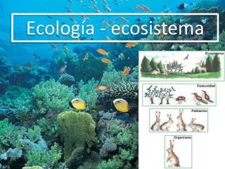 Ecolog�a - ecosistema