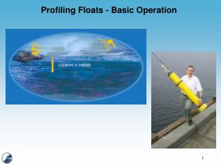 Profiling Floats - Basic Operation