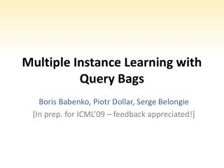 Multiple Instance Learning with Query Bags