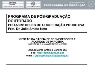 GESTÃO DA CADEIA DE FORNECEDORES E ACORDOS DE PARCERIA  (MARINHO, B.L.;AMATO NETO, J, 2001)