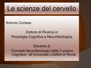 Le scienze del cervello
