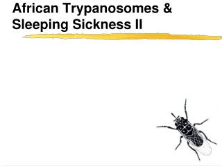 African Trypanosomes  Sleeping Sickness II