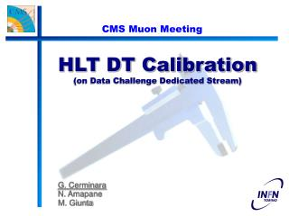 HLT DT Calibration  (on Data Challenge Dedicated Stream)