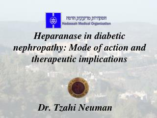 Heparanase  in diabetic nephropathy: Mode of action and therapeutic implications