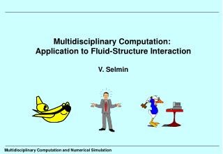 Multidisciplinary Computation:  Application to Fluid-Structure Interaction V. Selmin