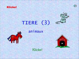TIERE (3)
