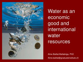 Water as an economic good and international water resources