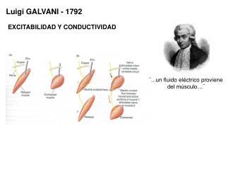 Luigi GALVANI - 1792
