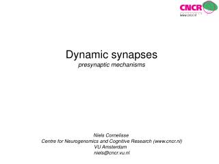 Dynamic synapses presynaptic mechanisms Niels Cornelisse