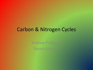 Carbon & Nitrogen Cycles