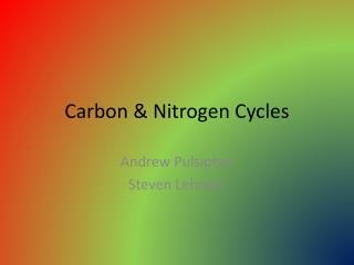 Carbon & Nitrogen Cycles