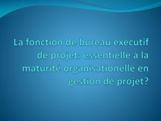 Maturité en gestion de projet