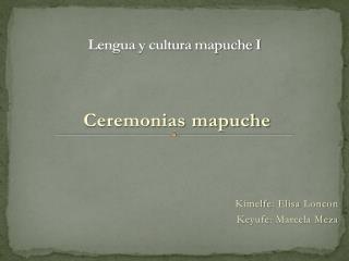 Lengua y cultura mapuche I