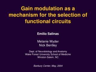 Gain modulation as a mechanism for the selection of functional circuits