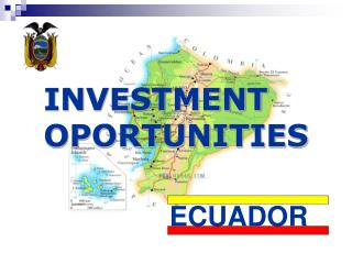 INVESTMENT OPORTUNITIES
