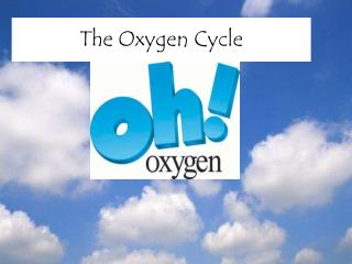 The Oxygen Cycle