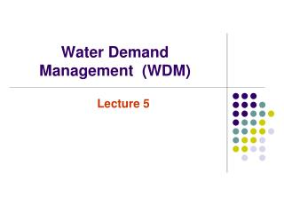 Water Demand Management  (WDM)