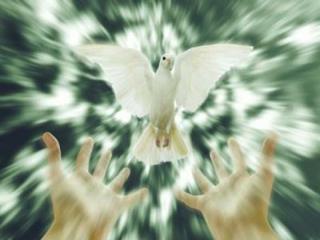 SOLENIDADE DE PENTECOSTES RECEBEI O ESPÍRITO SANTO