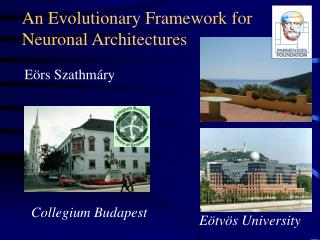 An Evolutionary Framework for Neuronal Architectures