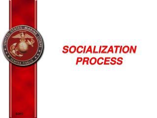 SOCIALIZATION  PROCESS