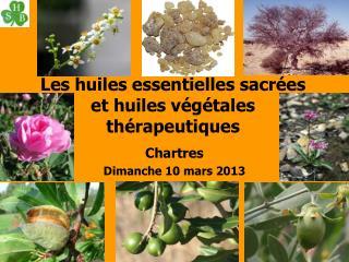 Les huiles essentielles sacrées et huiles végétales thérapeutiques