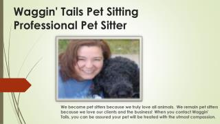 pet sitter Colorado Springs
