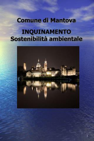 Comune di Mantova INQUINAMENTO Sostenibilità ambientale