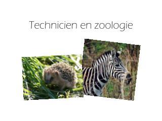 Technicien en zoologie