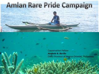 Amlan  Rare Pride Campaign