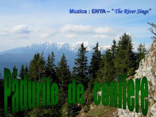 """Muzica : ENYA –  """" The River Sings"""""""