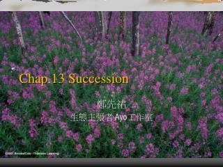 Chap.13 Succession