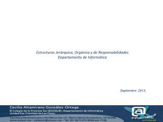Estructuras Jerárquica, Orgánica y de Responsabilidades Departamento de Informática