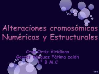 Alteraciones cromos�micas Num�ricas y Estructurales