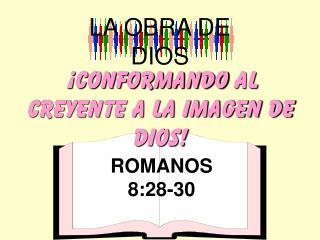 ¡ cONFORMANDO  AL CREYENTE A LA IMAGEN DE DIOS!