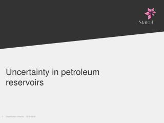Uncertainty in petroleum reservoirs