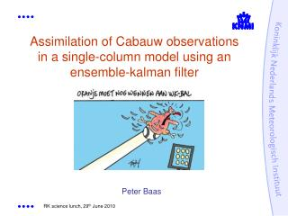 Assimilation of Cabauw observations in a single-column model using an ensemble-kalman filter