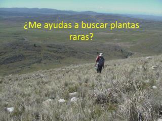 ¿Me ayudas a buscar plantas raras?