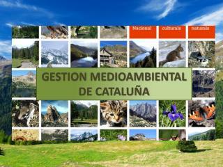 GESTION MEDIOAMBIENTAL DE CATALUÑA