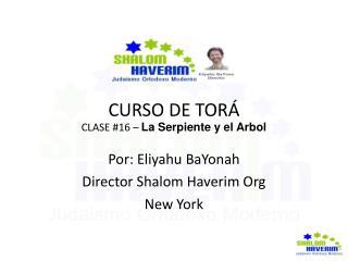 CURSO DE TORÁ CLASE #16 –  La Serpiente y el Arbol