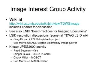 Image Interest Group Activity