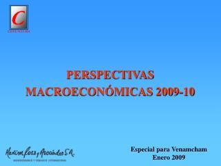 PERSPECTIVAS MACROECONÓMICAS 2009-10