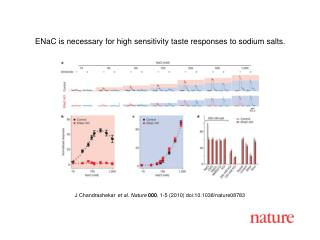 J Chandrashekar et al. Nature 000 , 1-5 (2010) doi:10.1038/nature08783