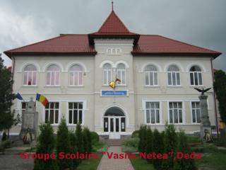 "Groupe Scolaire ""Vasile Netea"",Deda"