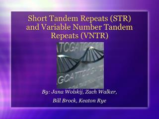 Short Tandem Repeats (STR)  and Variable Number Tandem Repeats (VNTR)